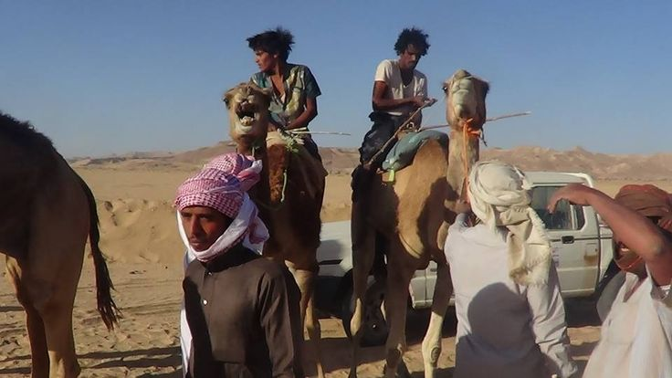 Annual Camel Festival took place last month in Thuf, Mahra Governorate, Yemen