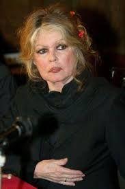 Výsledok vyhľadávania obrázkov pre dopyt brigitte bardot jean paul belmondo