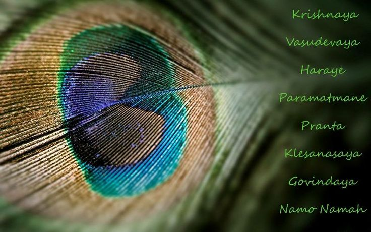 KRISHNAYA VASUDEVAYA HARAYE PARAMATMANE PRANATAH KLESHA NAASHAAYA GOVINDAAYA NAMO NAMAH. Again and again we offer our obeisances unto Lord Krishna, Hari, the son of Vasudeva. That Supreme Soul, Govinda, vanquishes the suffering of all who surrender to Him.