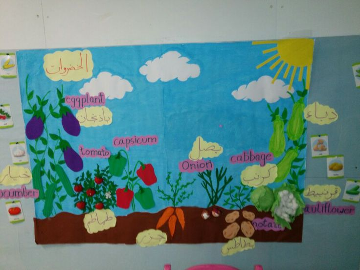 Vegetable Classroom Display Board Classroom Display