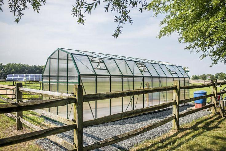 Customer Submitted Grandio Elite 8x24 Greenhouse - Jack | Grandio Greenhouses