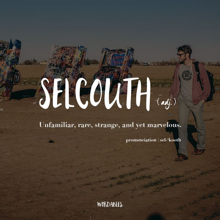 """""""Unfamiliar, rare, strange, and yet marvelous."""" Just like the word selcouth itself!"""