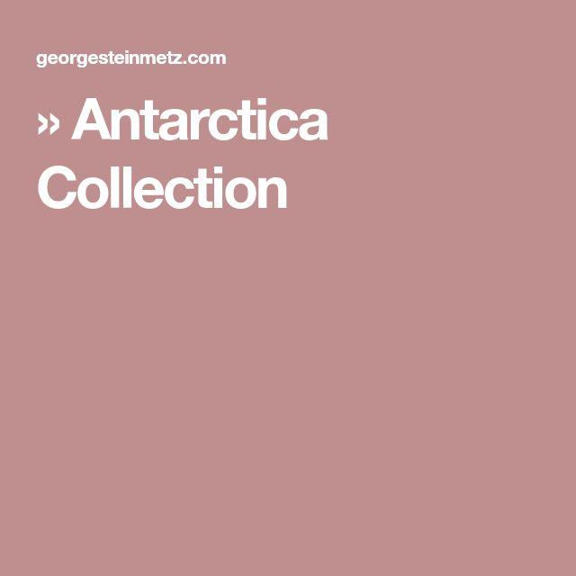 » Antarctica Collection