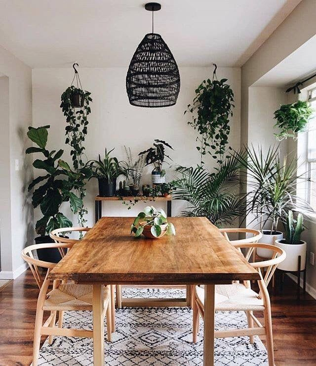 Adding Greenery To Home Dining Spaces To Create A Stylish Yet