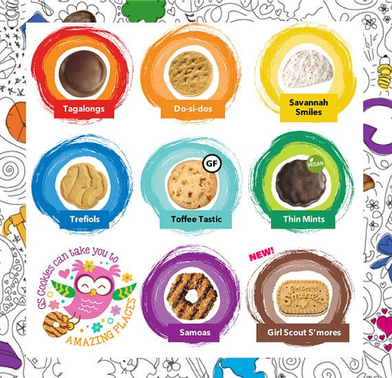 2017 Girl Scout Cookies Lanyards ABC u0026 Brownie by JakeAndCoco