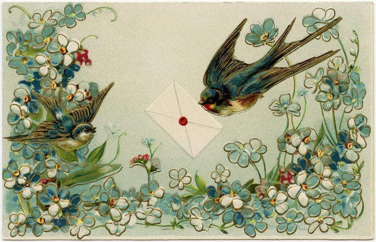 Vintage Birds and Flowers Postcard ~ Free Download | Old Design ...