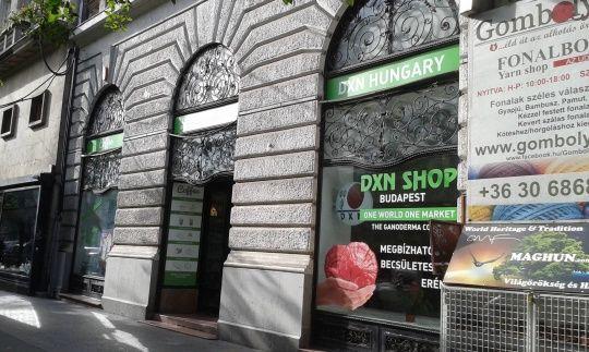 Ganodermakávé - egy csésze egészség Budapest szívében a Teréz körút 8. szám alatt a kávézóban is megkóstolható