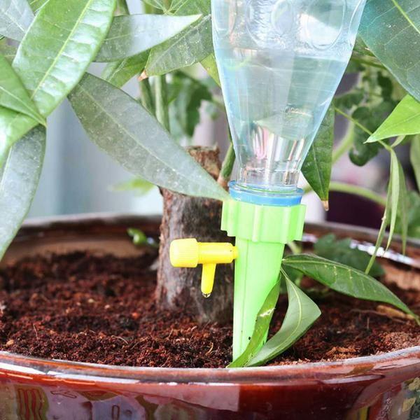 Epingle Sur Astuces Jardinage Plantes Et Arrosage