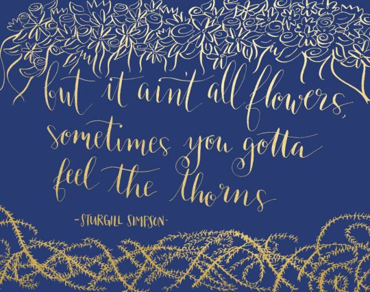 it ain't all flowers by sturgill simpson