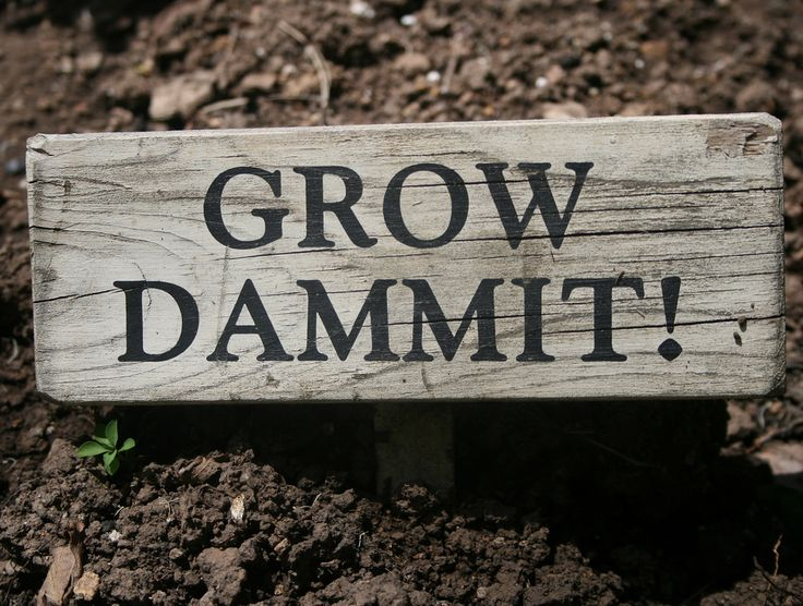 Grow Dammit Sign   by enovember