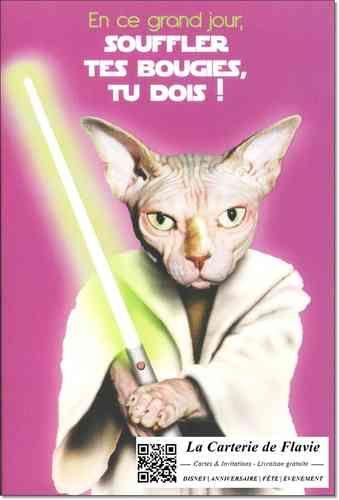 Carte anniversaire Pets Rock Star Wars