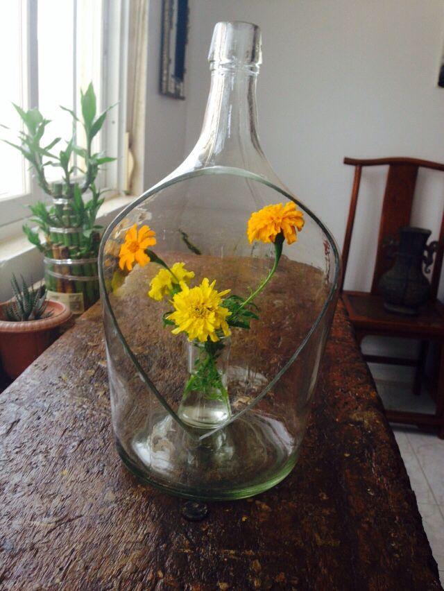 Wild flowers in a blotte