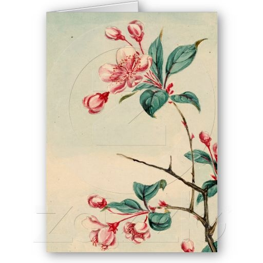 plum tree blossoms card plum tree tattoo designs and tatting. Black Bedroom Furniture Sets. Home Design Ideas