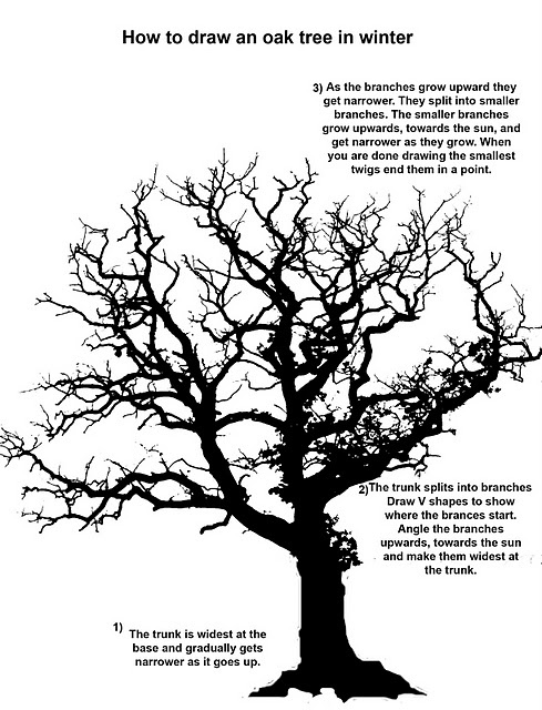 """""""how to draw a tree"""""""