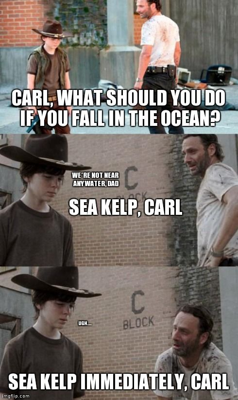 1030 Best Walking Dead Images On Pinterest Funny Stuff Ha Ha And