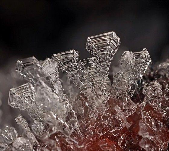 microscopische sneeuwvlokken froot19