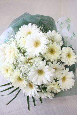 白いガーベラとカスミソウの花束。