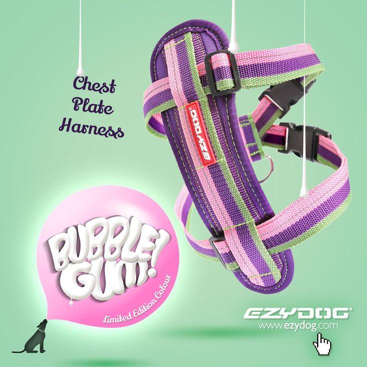 EzyDog - Bubble Gum - Chest Plate Harness, $25.00 (http://store.ezydog.com/bubble-gum-chest-plate-harness/)