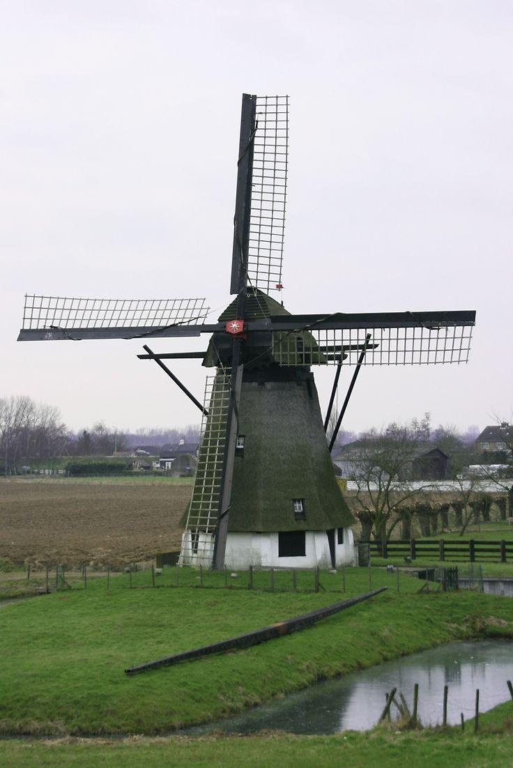 Werkendam afbeeldingen | Bestand:Werkendam - Vervoorne Molen.jpg - Wikipedia