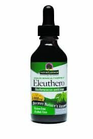 Studies have demonstrated the herb's numerous positive actions on enhancing mental and physical performance and ability to assist with immune system enhancement, physical and mental stress symptoms, exhaustion and other conditions characterized by low energy levels. Eleuthero may be a potential treatment for chronic fatigue syndrome, and adrenal fatigue caused by excessive stress. The plant may assist with alleviating symptoms of certain anxiety disorders e.g. panic attacks, social anxiety…