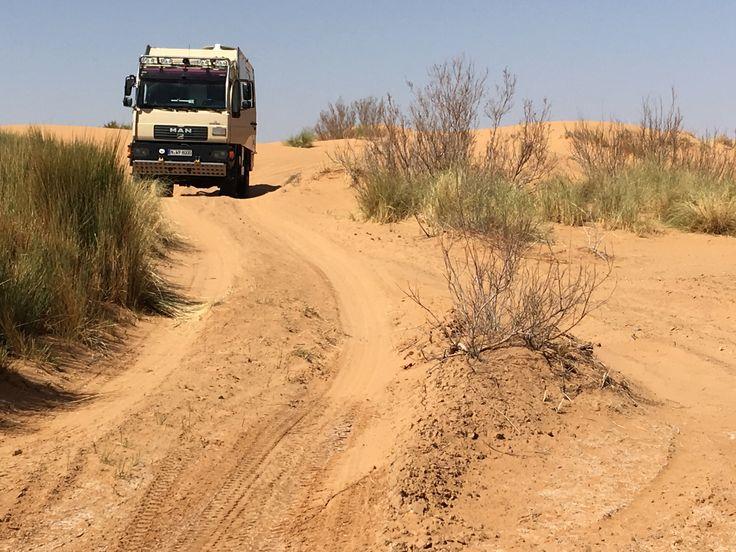 Erg Chebbi | Ab in die Wüste mit unserem Truck  #wüste #sahara