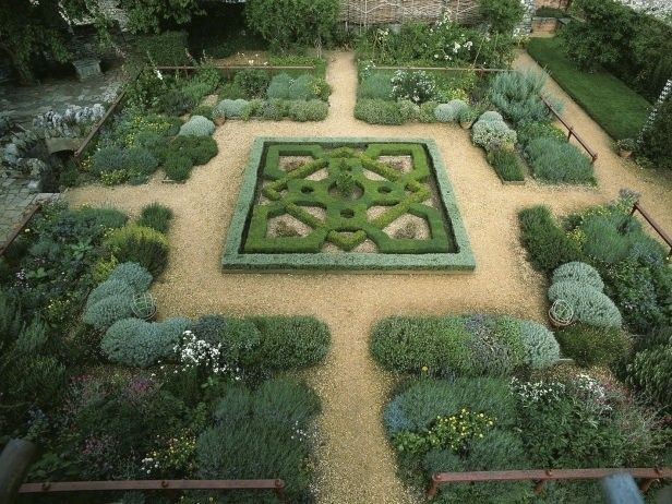 1000 images about knot garden on pinterest gardens for Herb knot garden designs