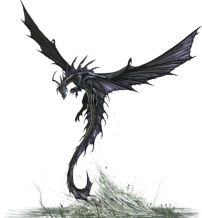 Black Dragon, take off by BenWootten.deviantart.com on @deviantART