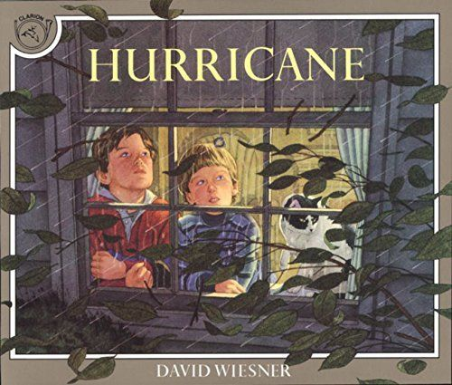 HURRICANE by David Wiesner is a realistically illustrated book about the forces of nature and imagination