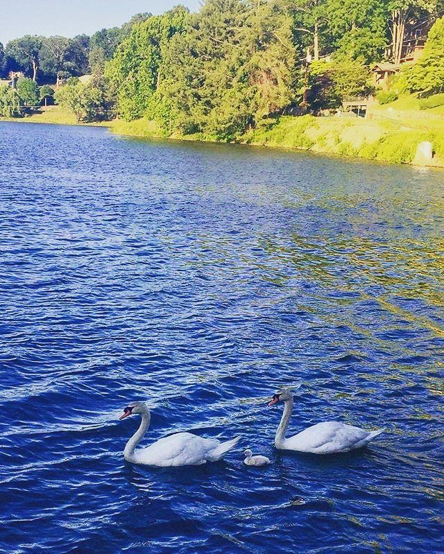lake junaluska single muslim girls It is often created around a single  wanda barzee, on the outskirts of salt lake city, and later  and is the first russian and the first muslim to win a.