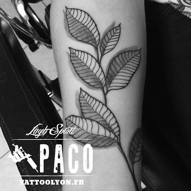 Tattoo feuilles en gravures 🌱 #tattoo #tattoolyon #tatuaje #tatoueur #tatoueurlyon #tattoos #art #cheyenne #blackandgreytattoo #silverbackink #barbernorthstar #feuilles #brindille #tatuagem #ecolo #vert #onrespire #lyon2