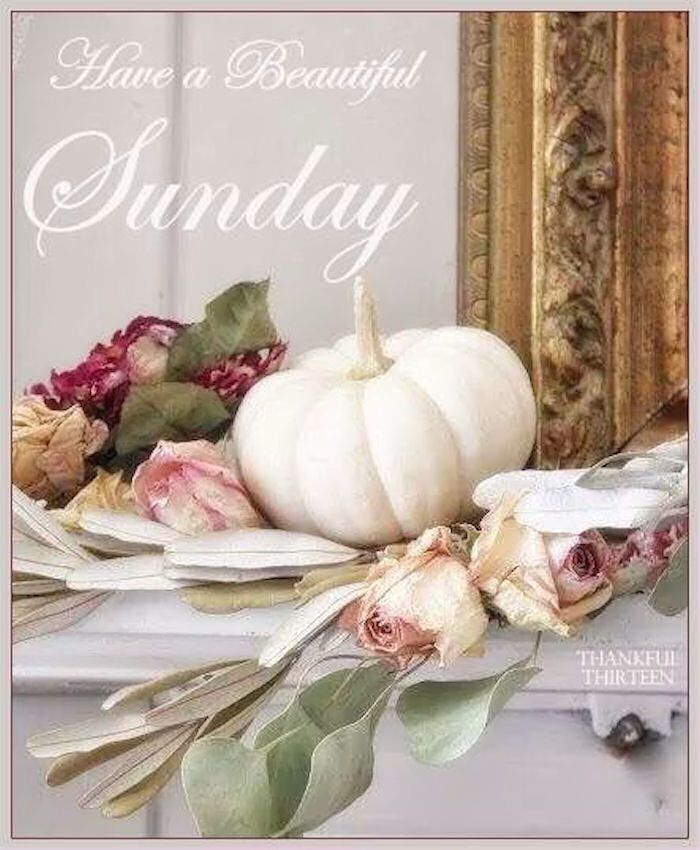 Have a beautiful Sunday sunday sunday quotes happy sunday happy sunday quotes sunday quotes for friends positive sunday quotes beautiful sunday quotes