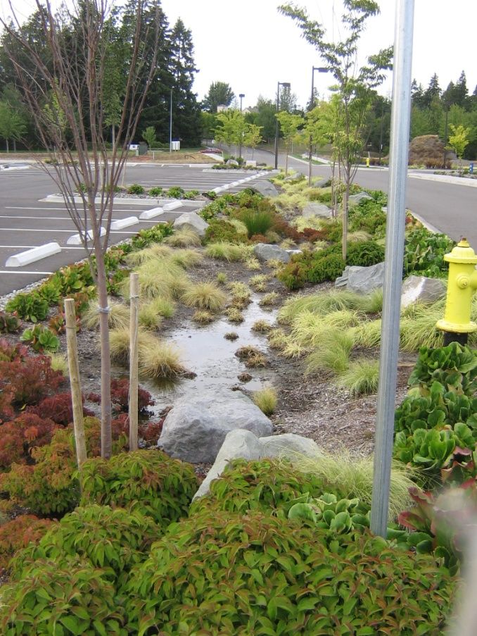 112 best images about stormwater on pinterest olympic for Garden design queens park