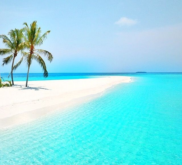 Exotic Beach: 3367 Best Plages Images On Pinterest