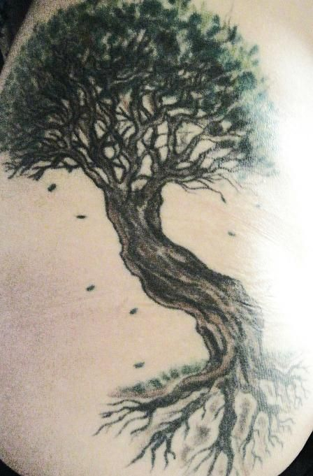 448 best images about Tree Tattoos on Pinterest