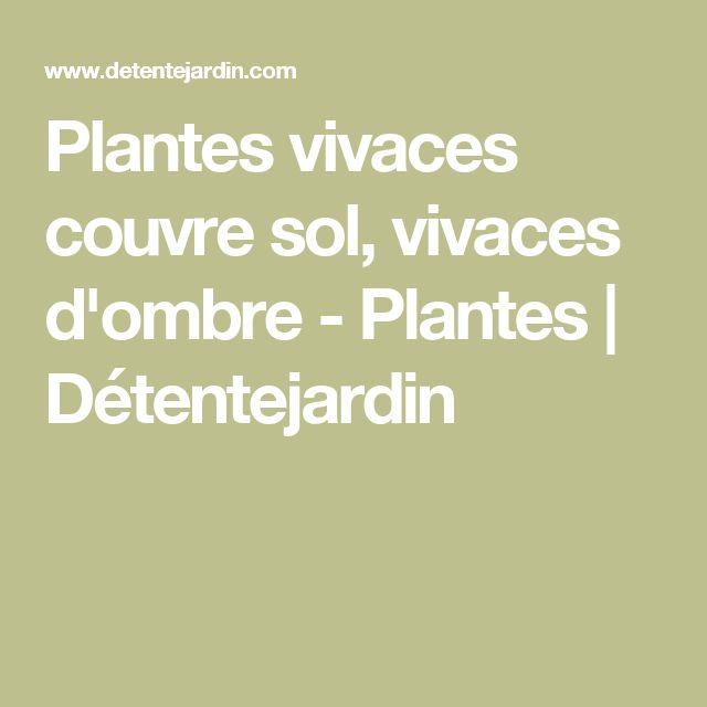 1000 id es sur le th me vivaces couvre sol sur pinterest for Plantes vivaces couvre sol