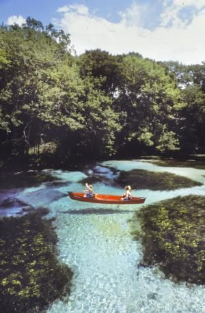 So many things to do in Florida- natural spring fed waters are great for kayaking & tubing!