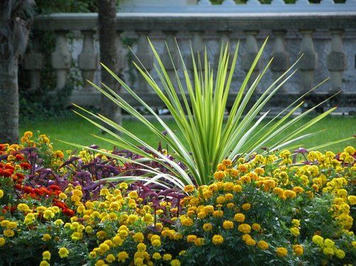 17 Best Images About Flower Bed Ideas For Mom On Pinterest