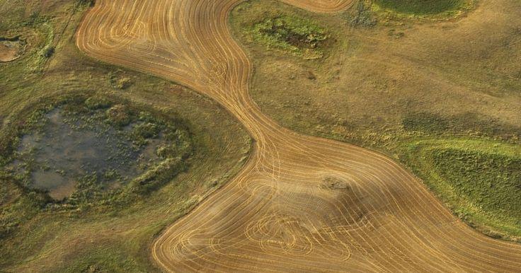 Factores bióticos y abióticos en la sabana herbosa. Una pradera de sabana es un sistema ecológico con arbustos dispersos y árboles aislados. Las praderas se encuentran a ambos lados del ecuador entre los bosques tropicales y los biomas del desierto y tienen temperaturas cálidas durante todo el año. Una sabana de pastizales tiene una variedad de componentes bióticos y abióticos que van de simples ...