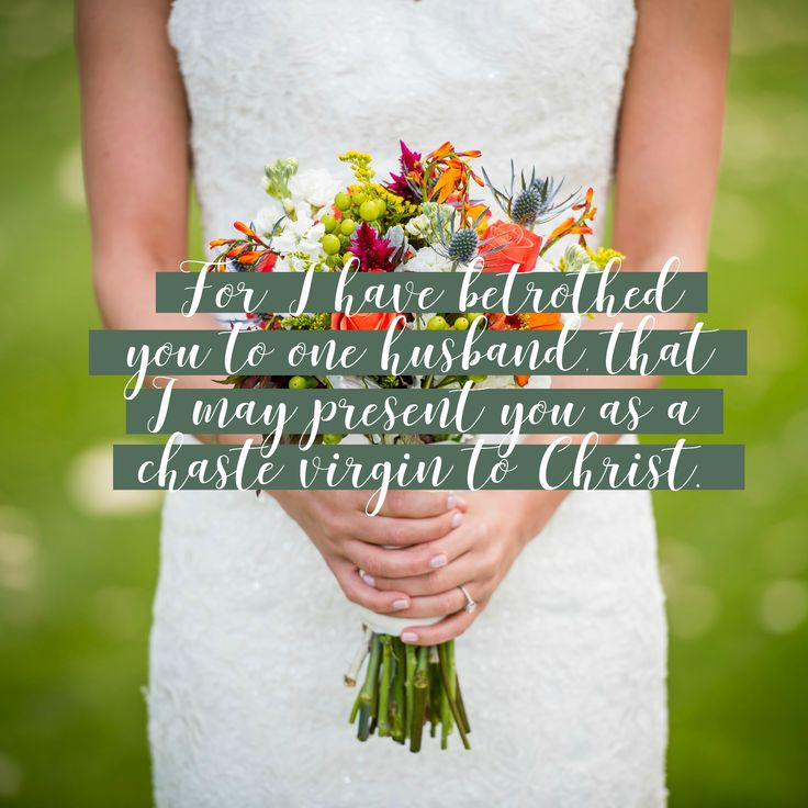 Day 262; September 19th: Betrothed (Ecclesiastes 7-9; 2 Corinthians 11:1-15)