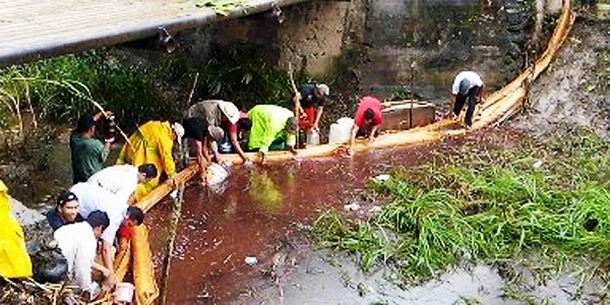 Aprovechan campesinos en Tabasco derrame de petróleo en el Plan Chontalpa