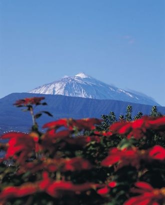 """Teide half day"" a Coach #Tenerife #excursion http://tenerife-direct.com/excursion/teide-half-day"