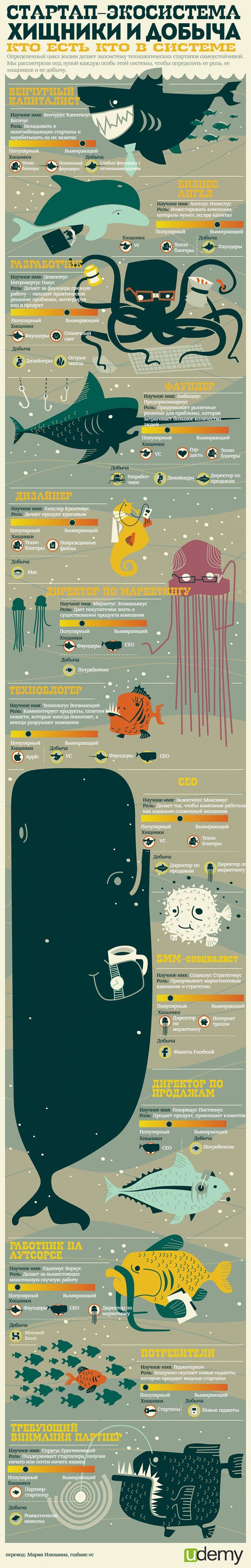 Инфографика: кто на кого охотится в стартап-экосистеме | StartUp школа - полезные статьи про стартапы, венчурные инвестиции