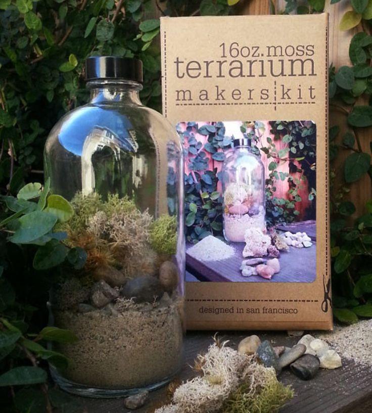 29 best diy terrarium kit images on pinterest terrarium kits diy moss terrarium kit solutioingenieria Image collections