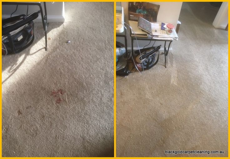 Blood stains definitely need professional removal