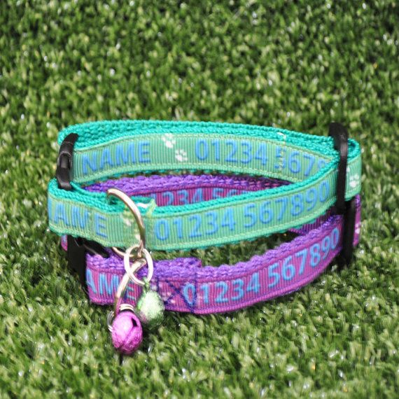 This 9mm ribbon can be personalised with either a emerald green or purple background colour along with your pet name, a contact number, followed by Chipped and either Spayed or Neutered. This ribbon will then been applied to 13mm webbing which is suitable for kittens and cats. Just tell us on checkout in comments to shop, the name, telephone number and if you would like spayed or neutered on the collar. **NOTE** Kitten/Cat Collar sizes will come with cat paw prints and fish bones. (pic 2...