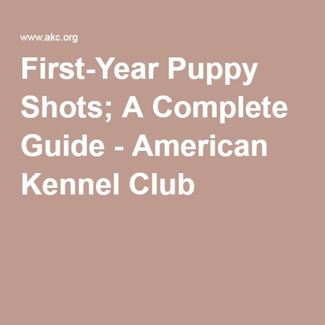 First-Year Puppy Shots; A Complete Guide - American Kennel Club