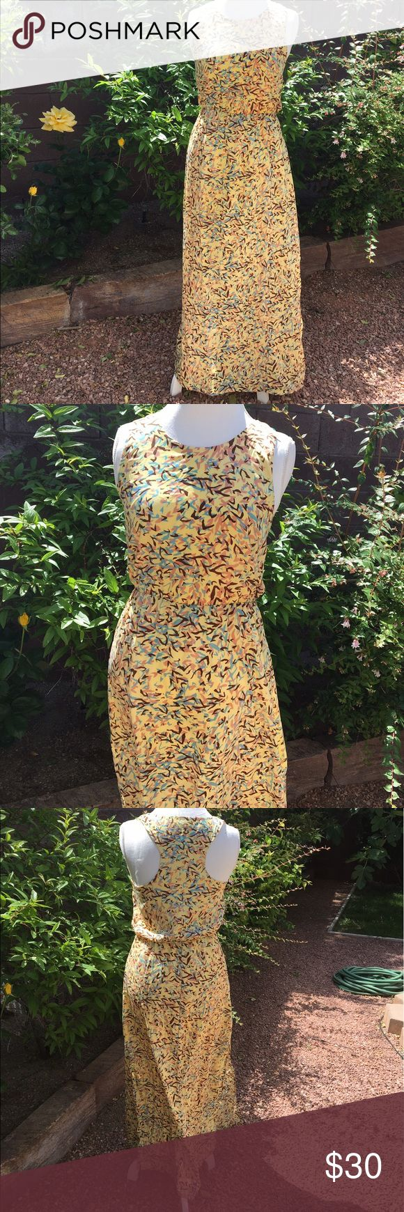 WALTER BAKER Spring Sleeveless Maxi Dress Walter Baker Maxi Dress in a spring yellow print. No rips No stains. Approx Measurements Waist: 30 Bust 36 W118 by Walter Baker Dresses