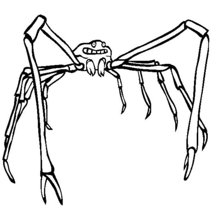Octonauts Coloring Pages Spider Crab 1 Spider Coloring Page Animal Coloring Pages Coloring Pages