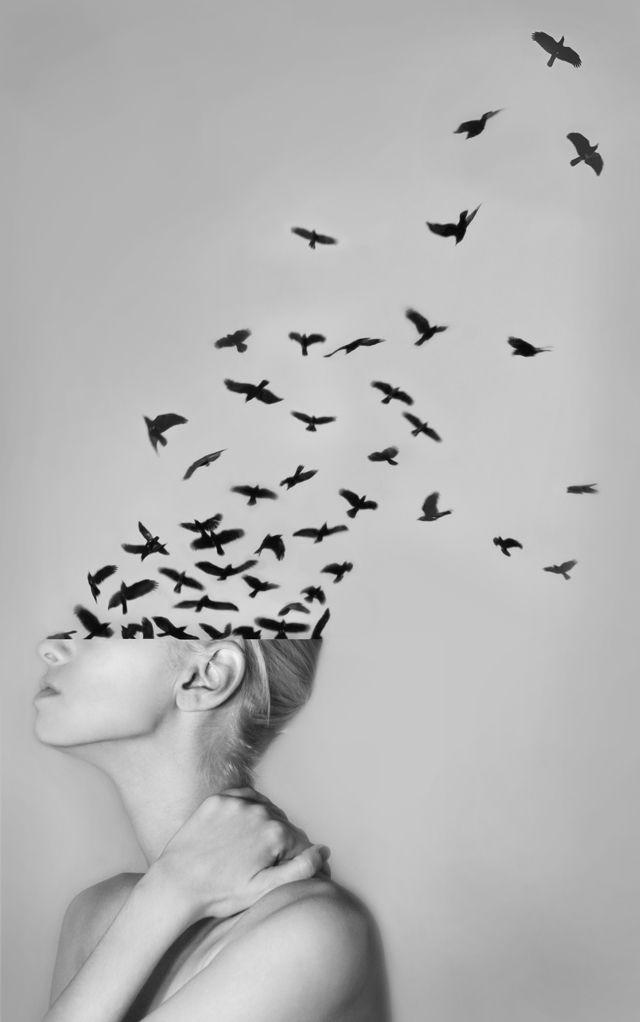 Картинка бабочки в моей голове