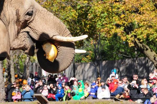 Milwaukee Journal Sentinel Zoo a la Carte Milwaukee, WI